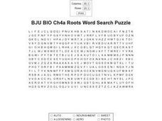 BJU BIO Ch4a Roots Word Search Puzzle Worksheet