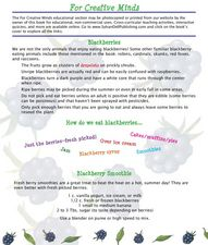 Blackberries Lesson Plan