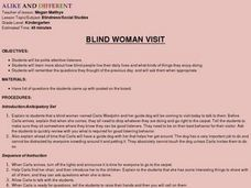 Blind Woman Visit Lesson Plan