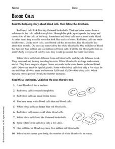 Blood Cells Worksheet