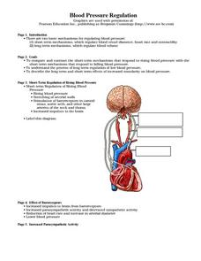 Blood Pressure Regulation Worksheet