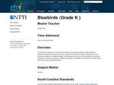 Bluebirds Lesson Plan