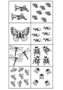 Bug Number Cards Lesson Plan