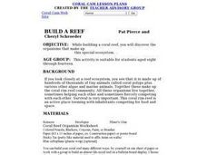 Build a Reef Lesson Plan
