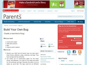 Build Your Own Bug Lesson Plan
