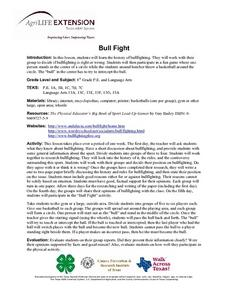 Bull Fight Lesson Plan