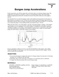 Bungee Jump Accelerations Lesson Plan