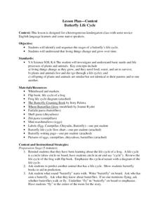 Butterfly Life Cycle Lesson Plan