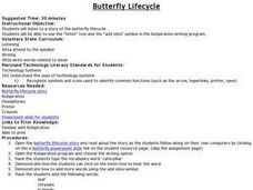 Butterfly Lifecycle Lesson Plan