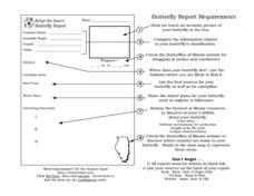 Butterfly Report Worksheet