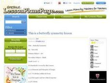 Butterfly Symmetry Lesson Plan