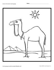 Camel in the Desert Worksheet