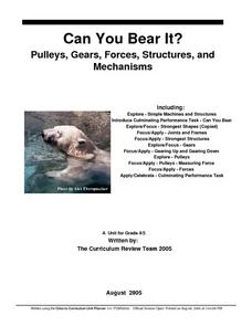 Can You Bear It? Pulleys, Gears, Forces, Structures and Mechanisms Lesson Plan