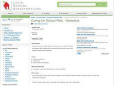 Caring for School Pets - Hamsters Lesson Plan