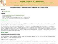 Casual Patterns in Ecosystems Lesson Plan