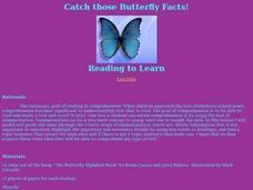 Catch those Butterfly Facts! Lesson Plan