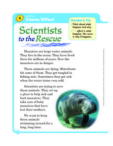 Cause and Effect: Scientists to the Rescue Worksheet