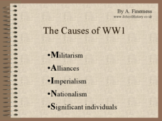 Cause of WWI Presentation