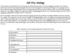 Printables Analogy Worksheets 8th Grade cell city analogy 8th 11th grade worksheet lesson planet worksheet