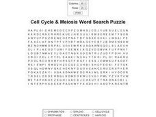 Cell Cycle & Meiosis Word Search Puzzle Worksheet