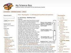 Cell Energy - Bubbling Yeast Lesson Plan