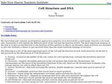 Cell Structure and DNA Lesson Plan