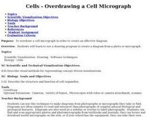 Cells - Overdrawing a Cell Micrograph Lesson Plan