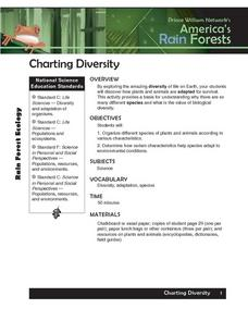 Charting Diversity Lesson Plan