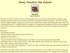 Chewy Chocolate Chip Cookies! Lesson Plan