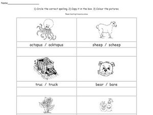 Choose the Correct Spelling Worksheet