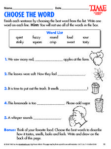 Choose the Words Lesson Plan