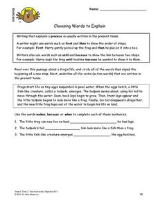 Choosing Words to Explain Lesson Plan