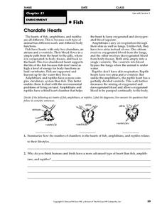 Chordate Hearts Worksheet
