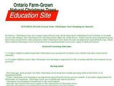 Christmas Tree Farming in Ontario Lesson Plan