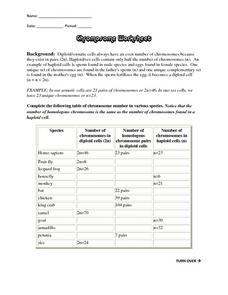Number Of Chromosomes Worksheet Lesson Plans Inc - Worksheets