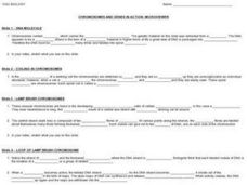 Chromosomes and Genes in Action: Microviewer Worksheet