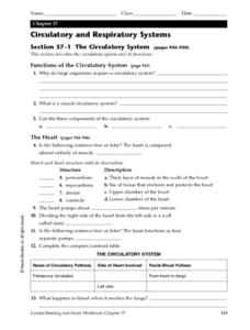 circulatory and respiratory systems 6th 8th grade worksheet lesson planet. Black Bedroom Furniture Sets. Home Design Ideas
