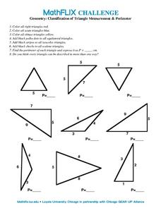Worksheets Types Of Triangles Worksheet classification of triangle measurement perimeter 10th grade worksheet