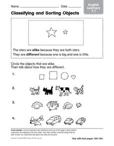 Classifying and Sorting Objects: English Learners Worksheet