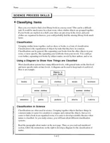 Classifying Items Worksheet