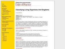 Classifying Living Organisms into Kingdoms Lesson Plan