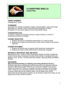 Classifying Shells Lesson Plan