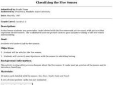 Classifying the Five Senses Lesson Plan
