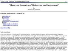 Classroom Ecosystems: Windows on our Environment Lesson Plan
