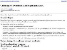 Cloning of Plasmid and Spinach DNA Lesson Plan