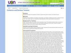 Cohesion and Surface Tension Lesson Plan