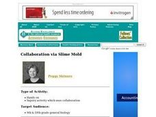 Collaboration via Slime Mold Lesson Plan