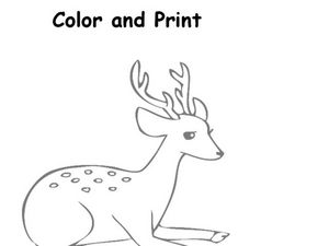 Color and Print Worksheet