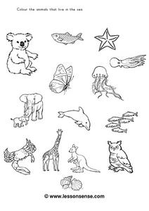 Color the Sea Animals Worksheet
