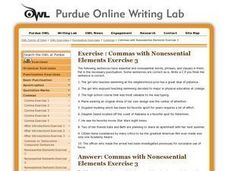 Commas with Nonessential Elements Exercise 3 Worksheet